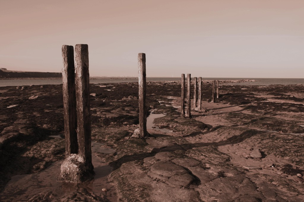 Posts in mud